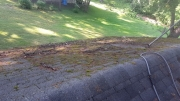Roof Cleaning - Before